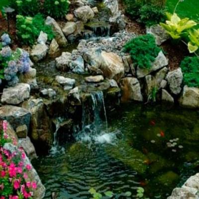 construcciones-de-piscinas-naturalizadas-madrid-01