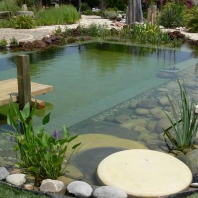 scenery-pool-construcciones-de-piscinas-naturalizadas-madrid-03