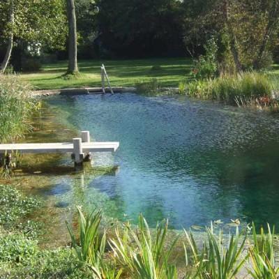 scenery-pool-construcciones-de-piscinas-naturalizadas-madrid-04