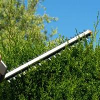 scenerypool-mantenimiento-jardines-comunidades