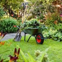 scenerypool-mantenimiento-jardines-particulares